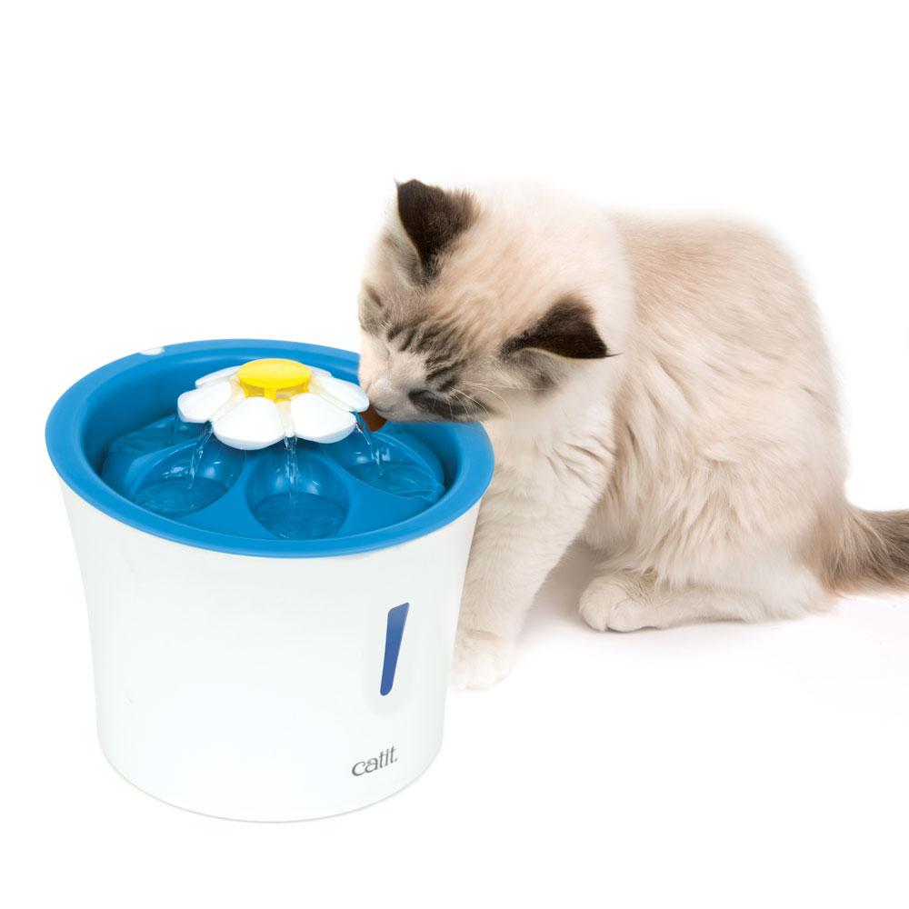 Katze trinkt aus Katzentrinkbrunnen