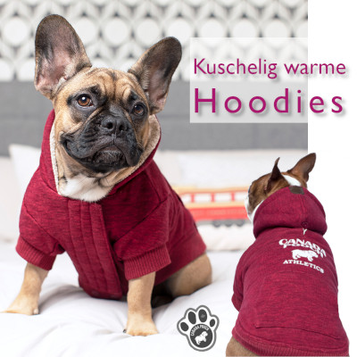 Hunde mit Hoodies