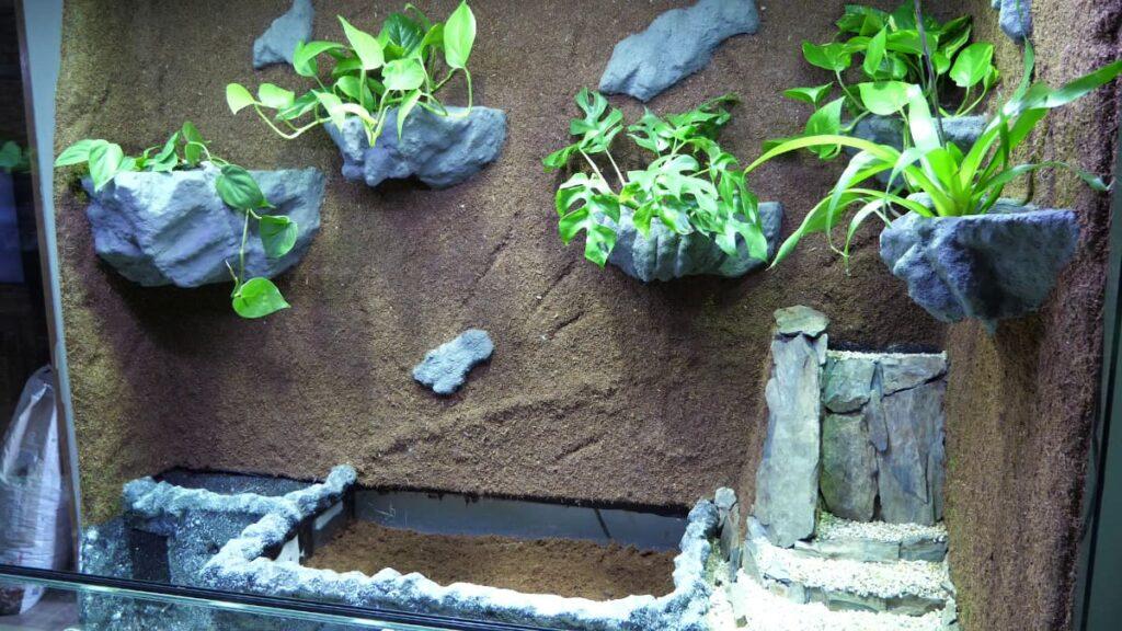 Paludarium mit halb gefülltem Bodenkasten
